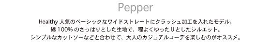 hp_pe_setsumei